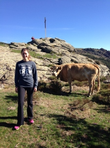 We ran into a few cows towards the top of the mountain.
